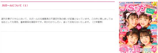 JSガールについて(1).PNG