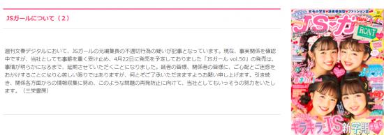 JSガールについて(2).PNG